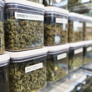 Marijuana Strains Online