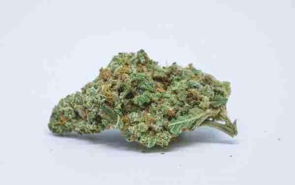 Banana Sherbet marijuana strain online