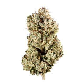 Buy GG4 marijuana Strain Online
