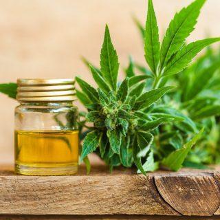 THC cannabis Oil online