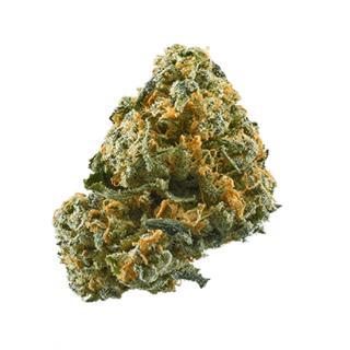 Sweet Cheese Marijuana Strain