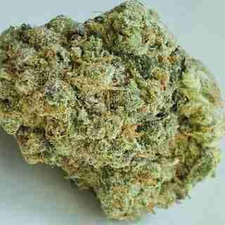 Alpha Blue Marijuana Strain