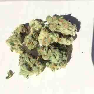 Sour Amnesia Marijuana Strain