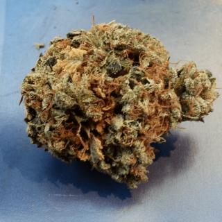 Trinity Marijuana Strain