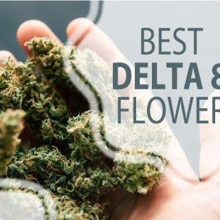 Delta 8 THC Flower Strains Online